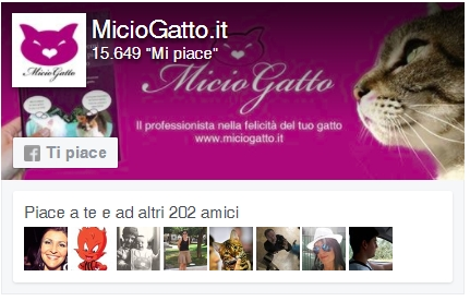 MicioGatto Facebook