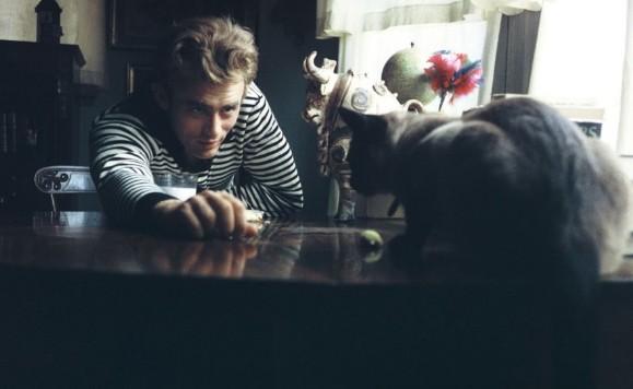 James Dean e il gatto nero