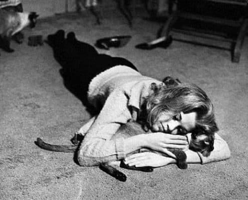 Jane Fonda e il gatto nero