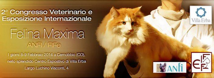 felinia maxima cernobbio 2015