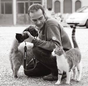 Marco Galli, il fotografo dei gatti