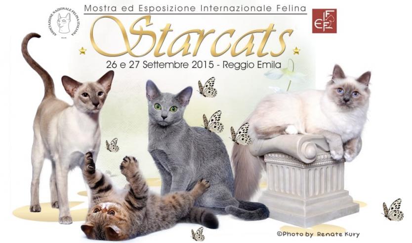 expo felina starcats 2015