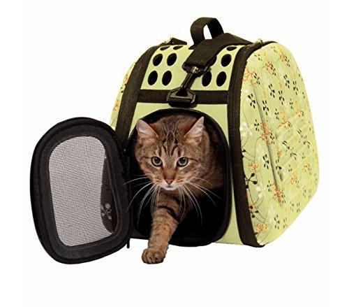 Scegliere il trasportino per gatti
