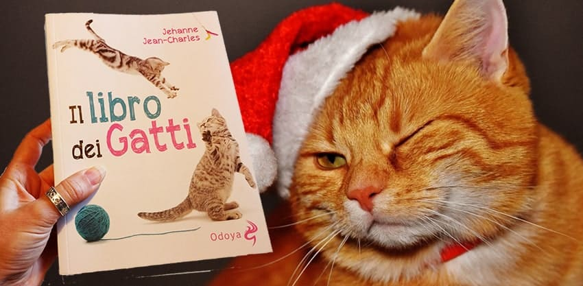 il libro dei gatti regalo di natale