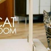 Catroom accessori gatto