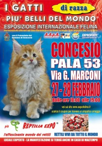locandina_felina Concesio