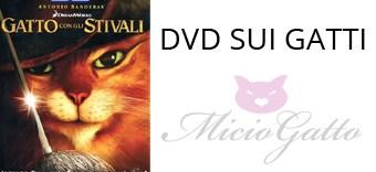 DVD sui gatti