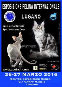 lugano-acef-2016-1-734x1024