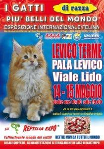 locandina-felina-Levico-Terme