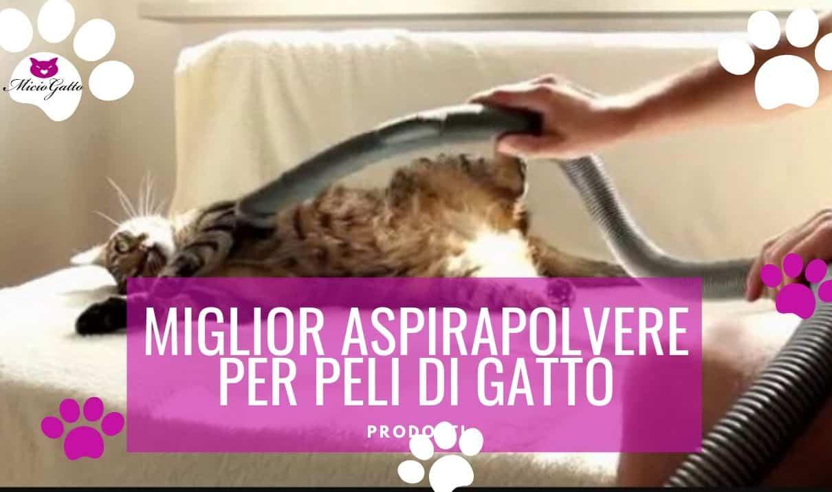 Miglior aspirapolvere peli di gatto
