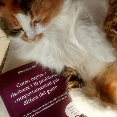 Manuale stampato comportamento gatto
