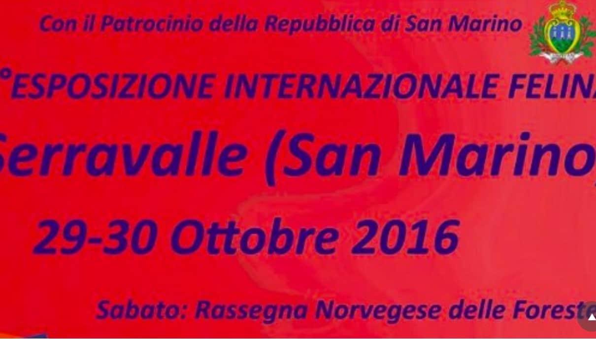 7° Esposizione internazionale felina di San Marino 2016