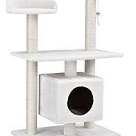 tiragraffi gatto medio