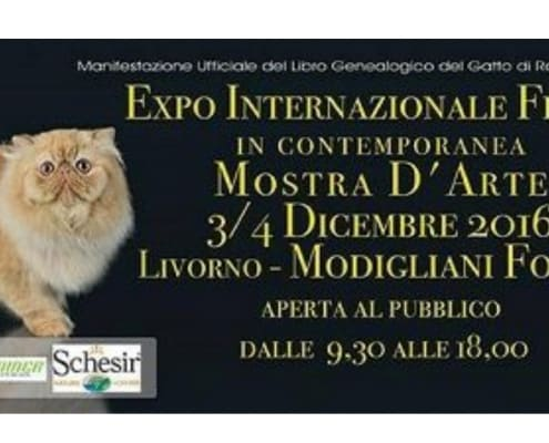 Expo Felina Internazionale 2016 Livorno