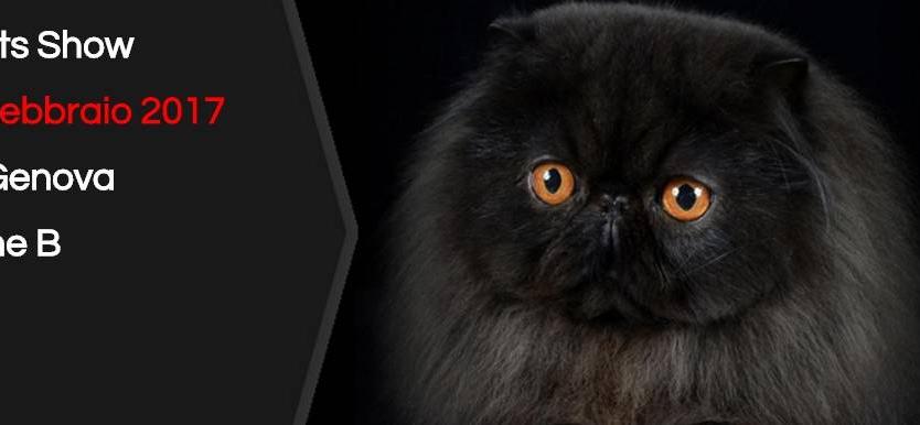 Expo felina worldcats genova 2017