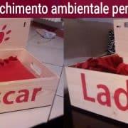 Arricchimento ambientale per gatti