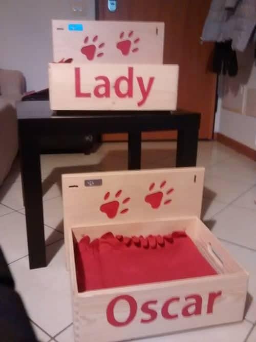 Box cucce per gatti in legno