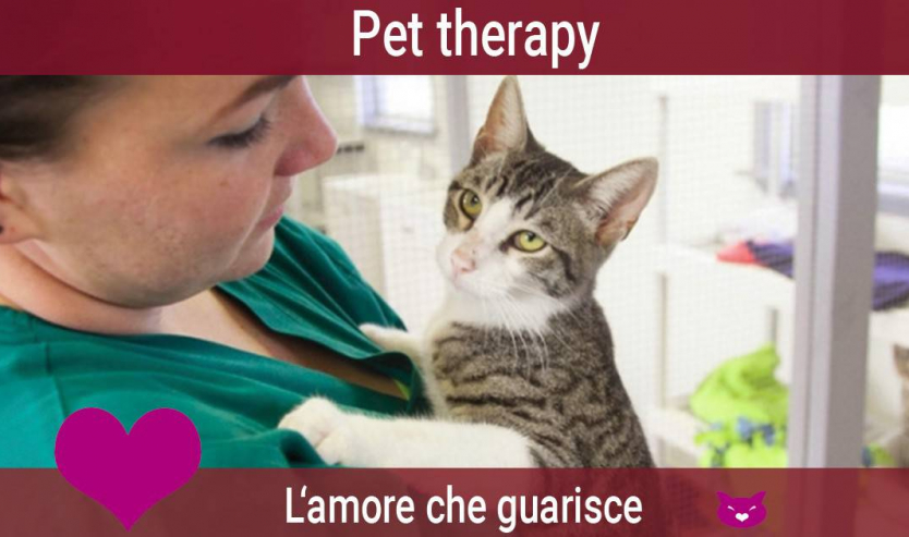 pet therapy e gatto