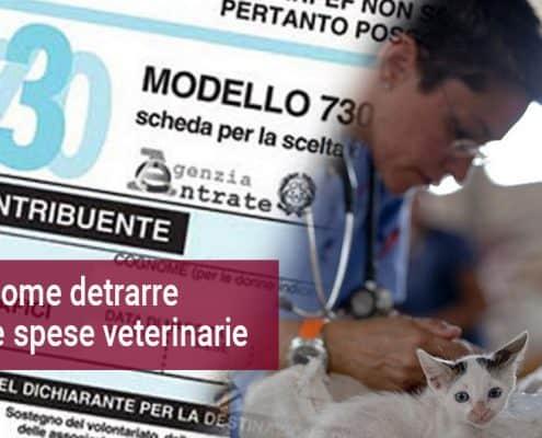 Spese veterinarie detraibili 730