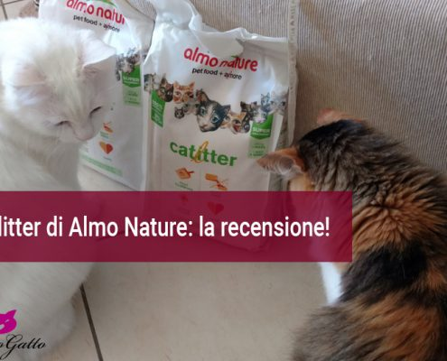 Cat litter Almo nature recensione-lettiera