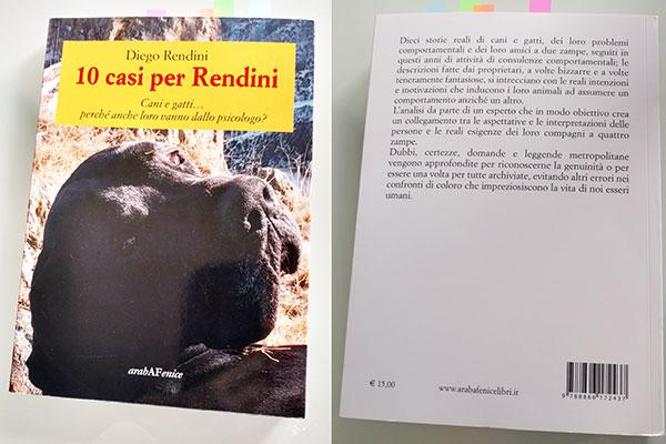 Fronte e retro del libro 10 casi per Rendini