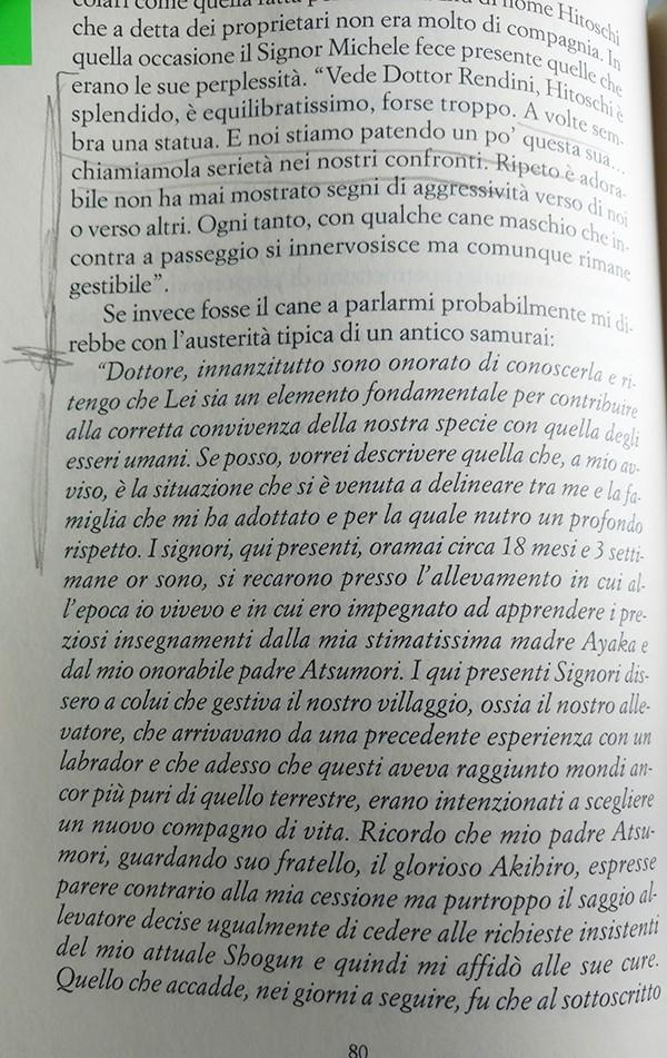 Lettura del libro di Diego Rendini