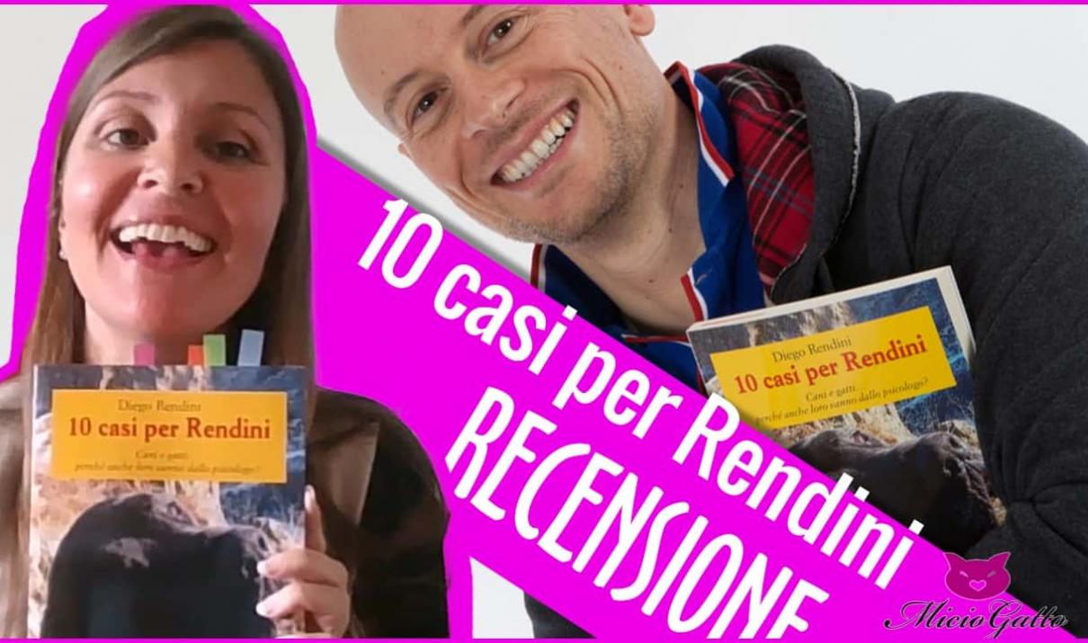 Diego Rendini recensione 10 casi pe rRendini