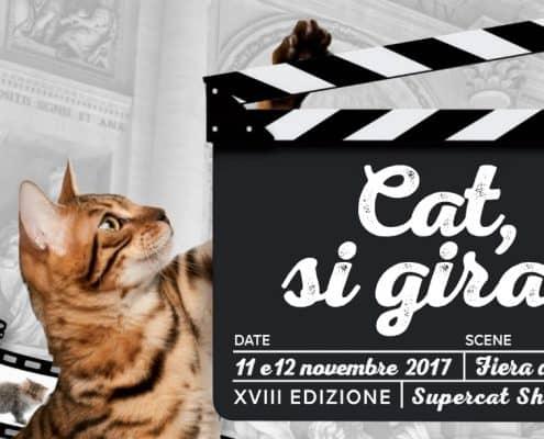 super cat show roma 2017