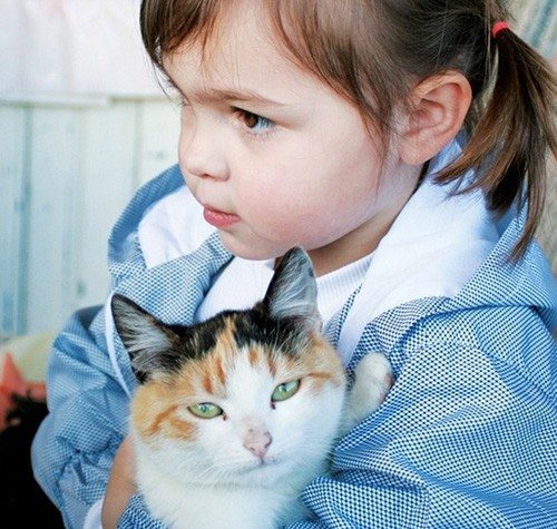 Bambini e gatti in casa