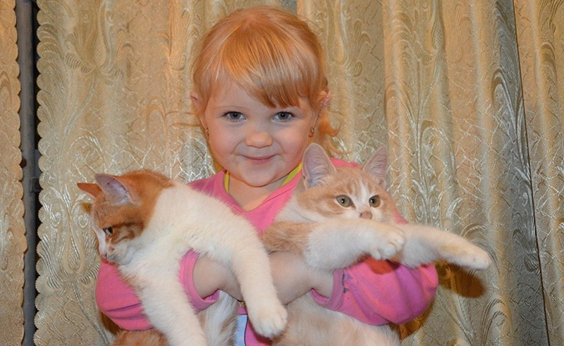 Bambino e gatto possono convivere serenamente