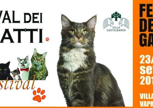 Festival dei gatti 2017 Milano