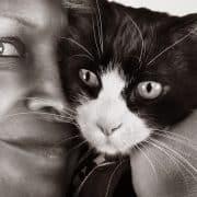 Felix, il gatto disabile a trazione anteriore