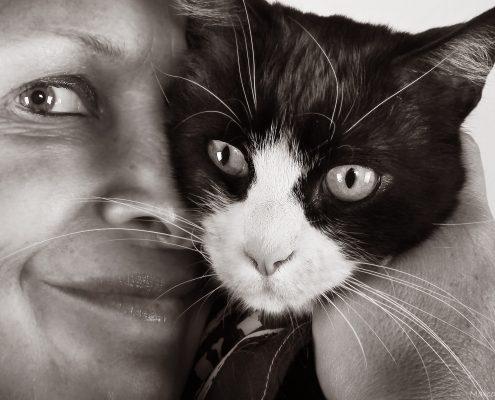Felix gatto disabile a trazione anteriore