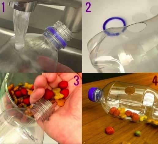 Bottiglia-gioco per il gatto
