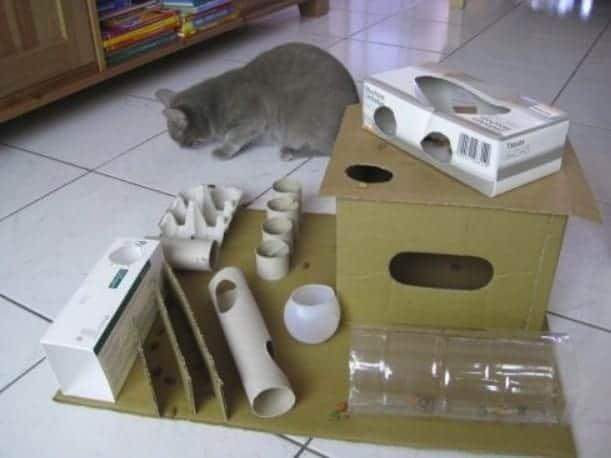 Parco giochi per gatti fai da te