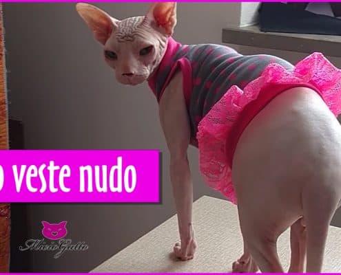 Vestiti per gatti Sphynx e non Dudo veste nudo