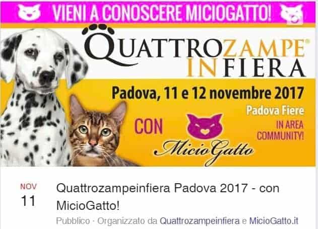 Evento Facebook Quattrozampeinfiera padova 2017
