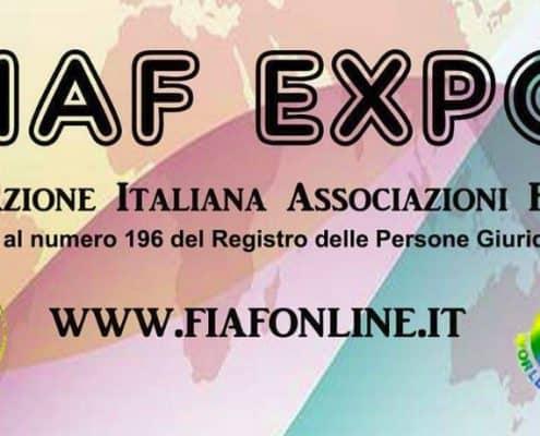 Esposizione internazionale felina FIAFWF di Gambolo