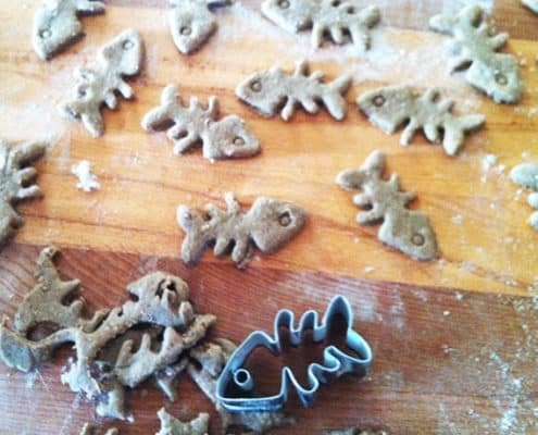 Biscotti al tonno per gatti