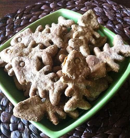 Biscotti per gatti