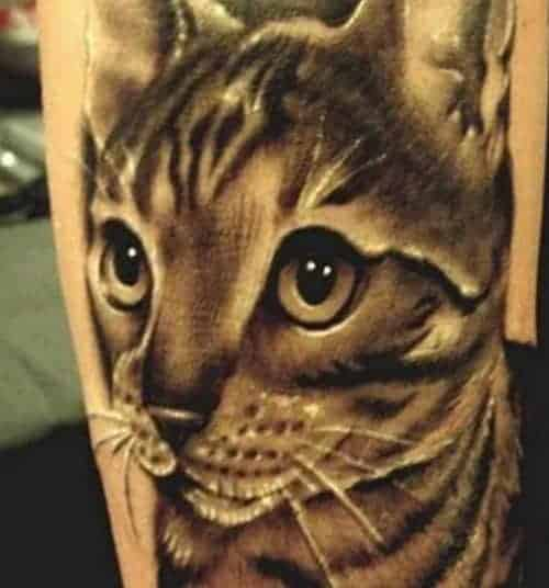 cat tatoo relistic