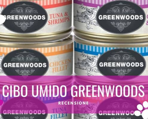 greenwoods umido gatti recensione opinioni