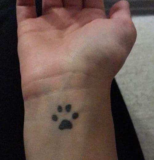 impronta gatto tatuaggio