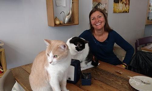 io e i gatti del miagola caffe