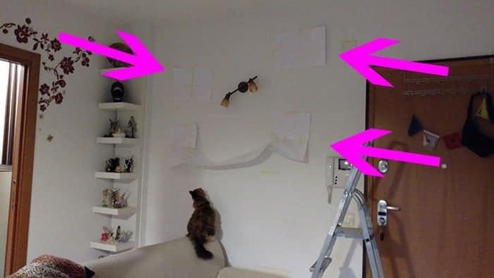 montare pareti attrezzate per gatti