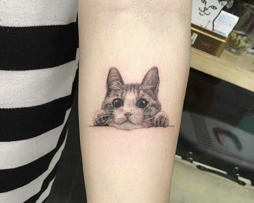 musetto di gatto tatuato
