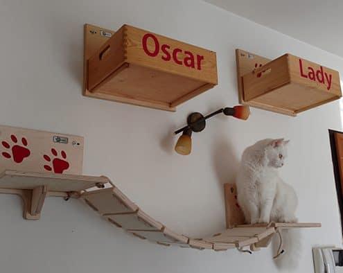 parete attrezzata per gatti montaggio