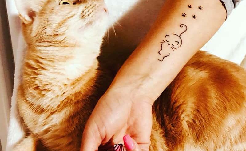 tatuaggi di gatti idee e immagini