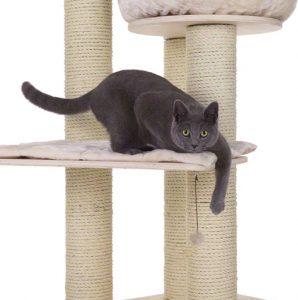tiragraffi xxl natural paradise gatto