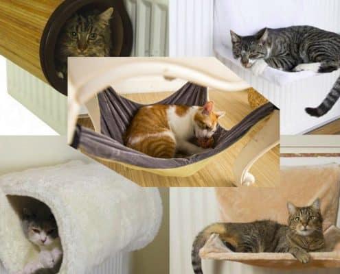 Amaca per gatti tipologie e consigli